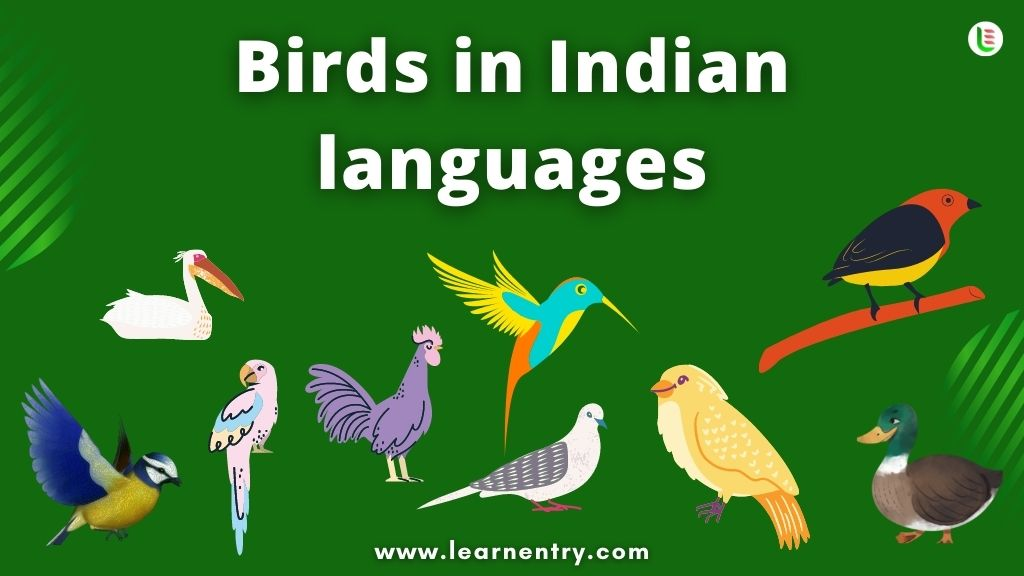Birds in Indian languages