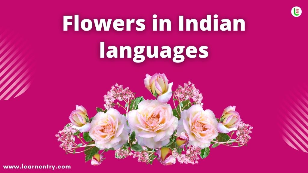 Flowers in Indian languages