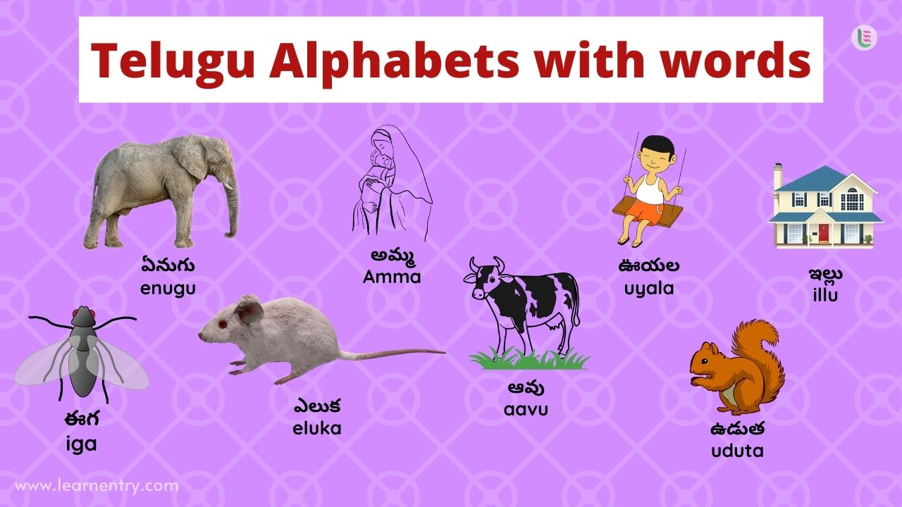 Telugu alphabet with words