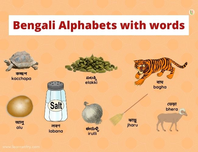 Bengali alphabets with words