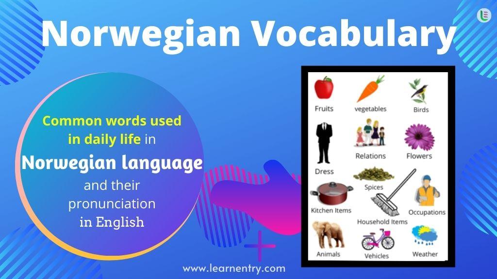 Common words in Norwegian