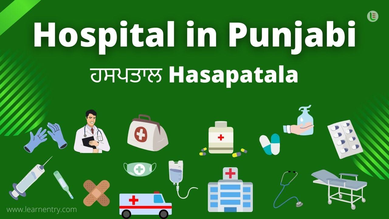 Hospital in punjabi