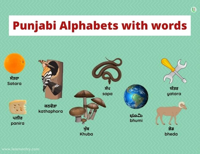 Punjabi alphabets with words