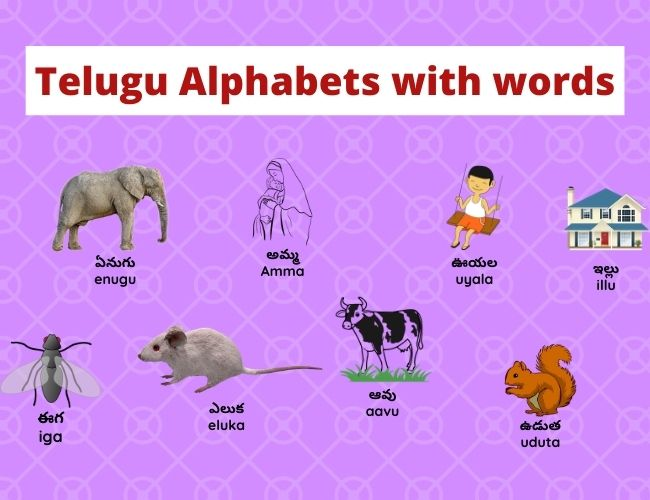 Telugu Alphabets with words
