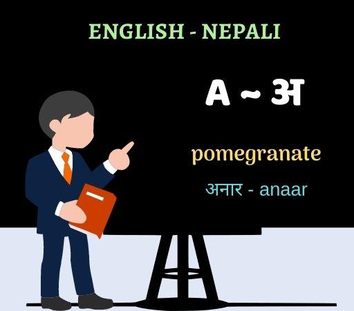 learn nepali through english