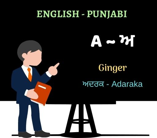 learn punjabi through english