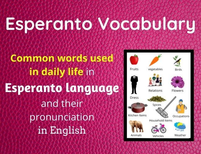 Esperanto vocabulary