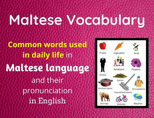 Maltese vocabulary