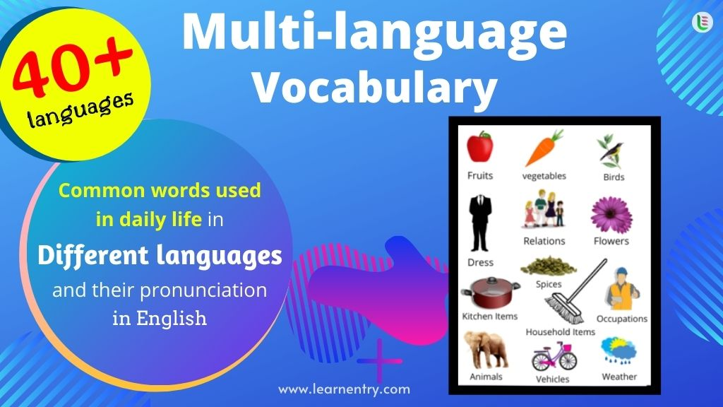 Multi-language vocabulary