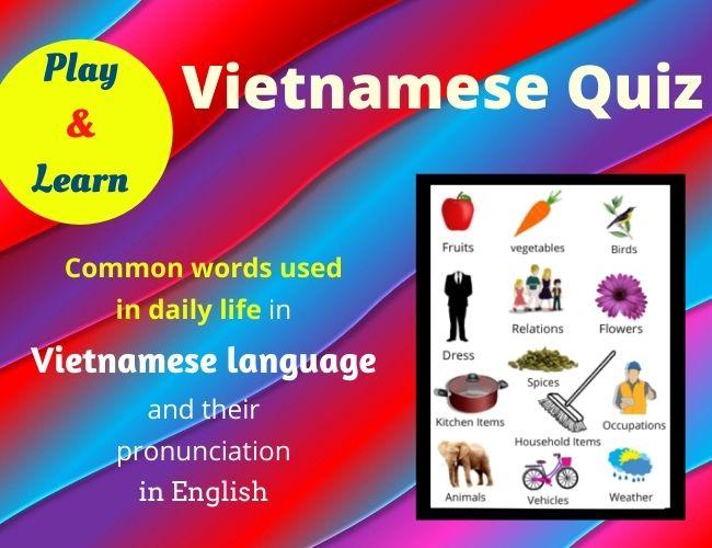 Vietnamese quiz