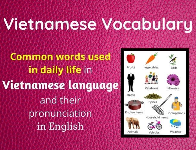 Vietnamese vocabulary