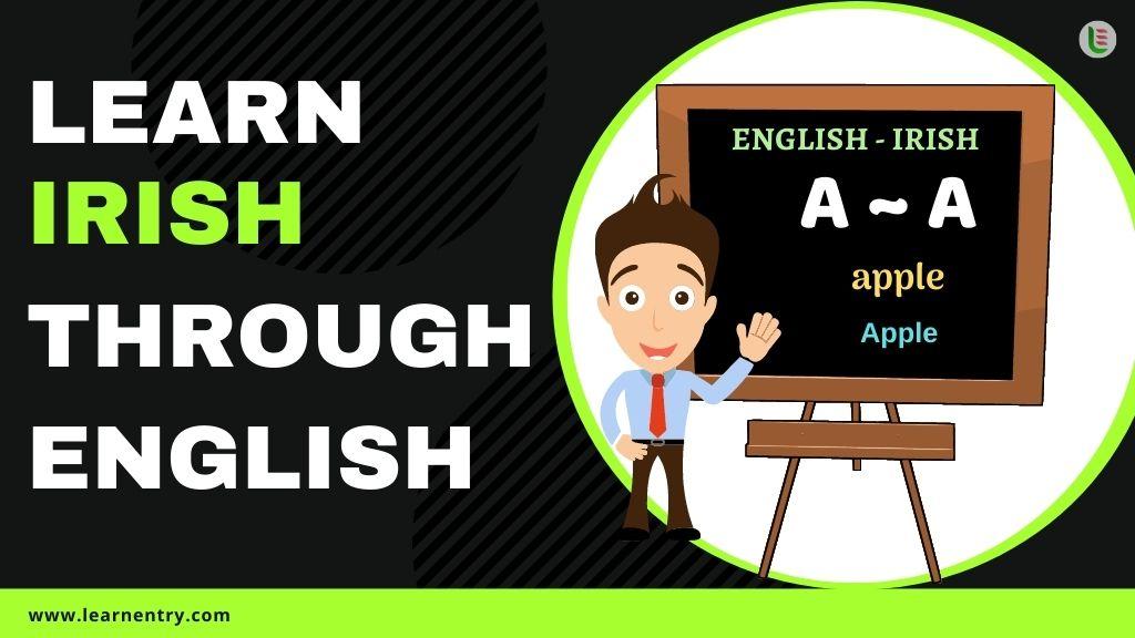 learn Irish through english