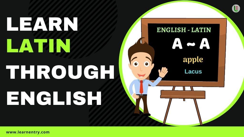 learn Latin through english