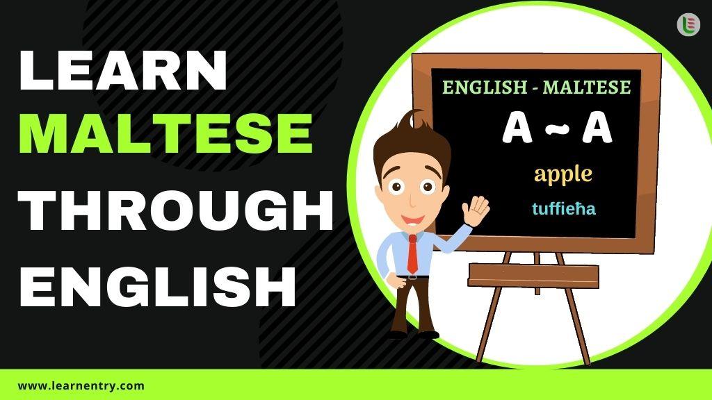 learn Maltese through english