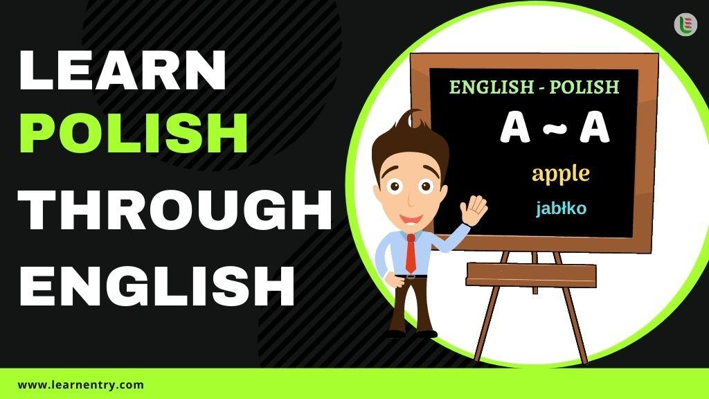 learn Polish through english